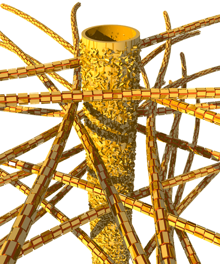Dentin's biological structure: tubules and mineral nanoparticles embedded in a network of collagen fibers. Image: Jean-Baptiste Forien, © Charité – Universitätsmedizin Berlin