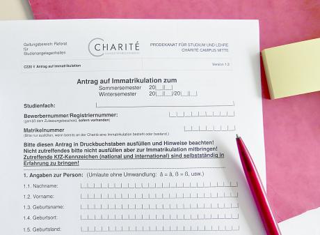 Bewerbung Zulassung Charité Universitätsmedizin Berlin